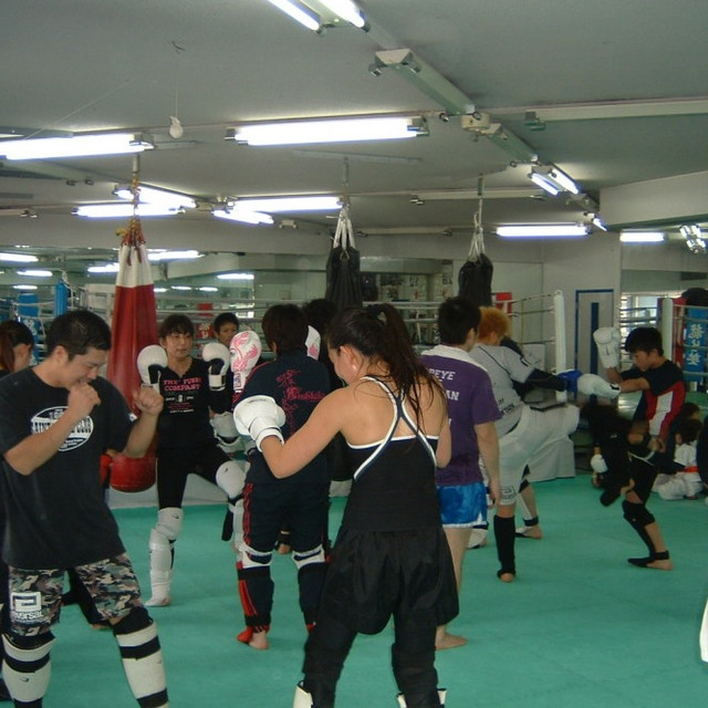 格闘スポーツスクールレックスジャパン